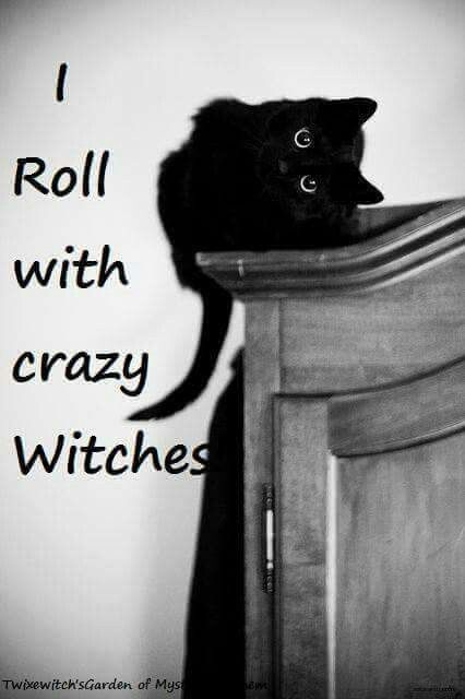 Black Cats Rock! Witches rock too!!! They are nice people and down to earth too. Theincensewoman