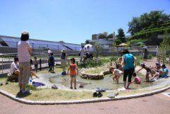 兵庫県姫路市の姫路市立水族館はおすすめの週末お出かけスポット 播磨灘の海の生態を再現した大水槽があったり川や池で暮らす淡水魚なんかの身近な水の生き物がいっぱい(ˊᗜˋ)و アカウミガメやペンギンのえさやりタイムとか体験型のイベントも行われていて子供たちに大人気なんですよ 夏休みには水遊びしながら魚に触れられるじゃぶじゃぶ小川で遊ぶのもおすすめ 家族で行っても良いしデートで使っても楽しめると思うよ  #水族館 #兵庫 #レジャースポット #アカウミガメ #ペンギン #デートスポット tags[兵庫県]