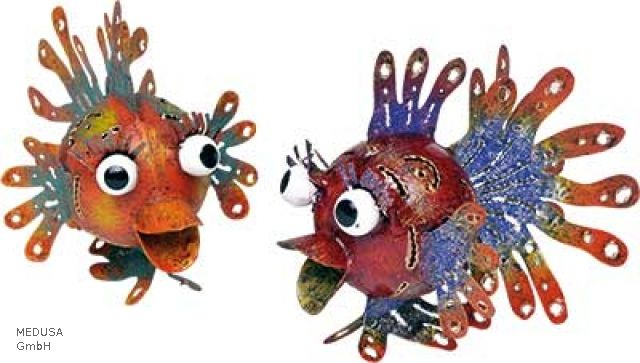 Medusa kogelvissen www.pand122.nl