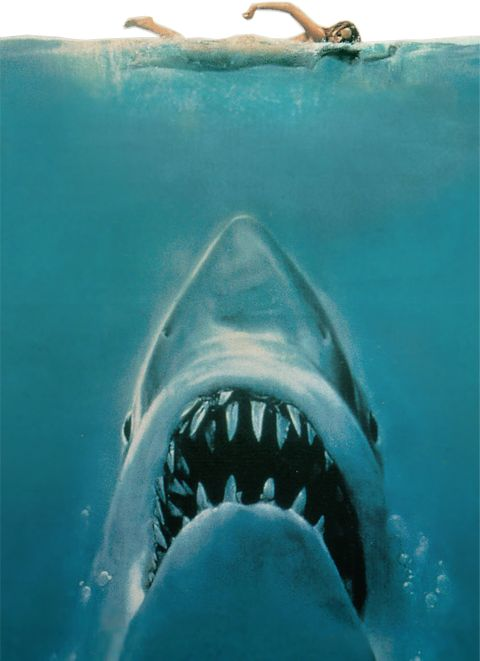 JAWS - After watching this it took a while to get back in the water.