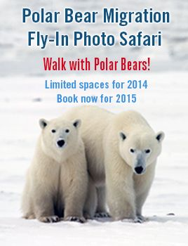 Professional Wildlife Photographer Sue Flood is the special guest on the November 10, 2014 departure.