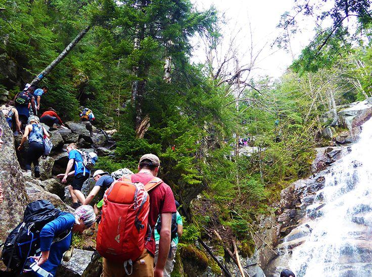Fin mai sur le sentiers des cascades en route vers Lafayette  Crédit photo : M. Desharnais