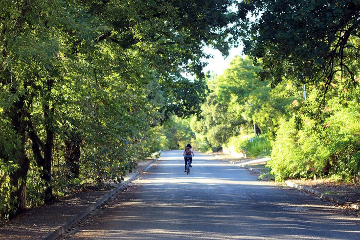 Tree-lined quiet village roads for easy cycling or walking from Schoone Oordt Country Hotel #Swellendam #SouthAfrica