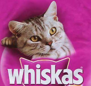 Whiskas Kedi Maması