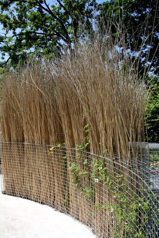You could also use the gabion framework like a large vase to support dried willow, bamboo or reeds to form a light and lacy screen, or even just dried leaves and twigs like this screen at the De Young Museum.