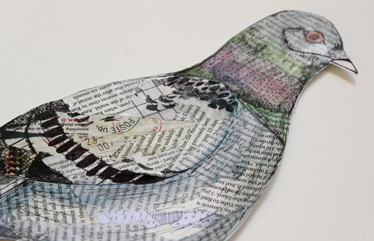Mixed media pigeon by Helen Wells