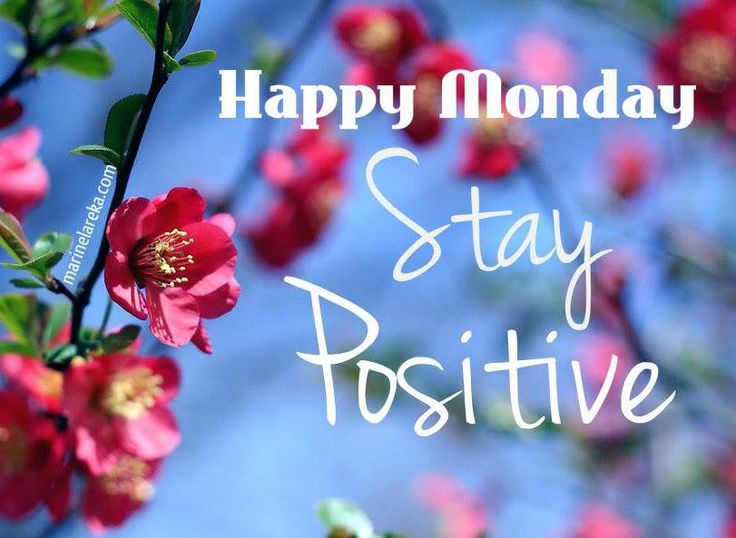 Happy Monday Stay Positive Pictures, Photos, And Images