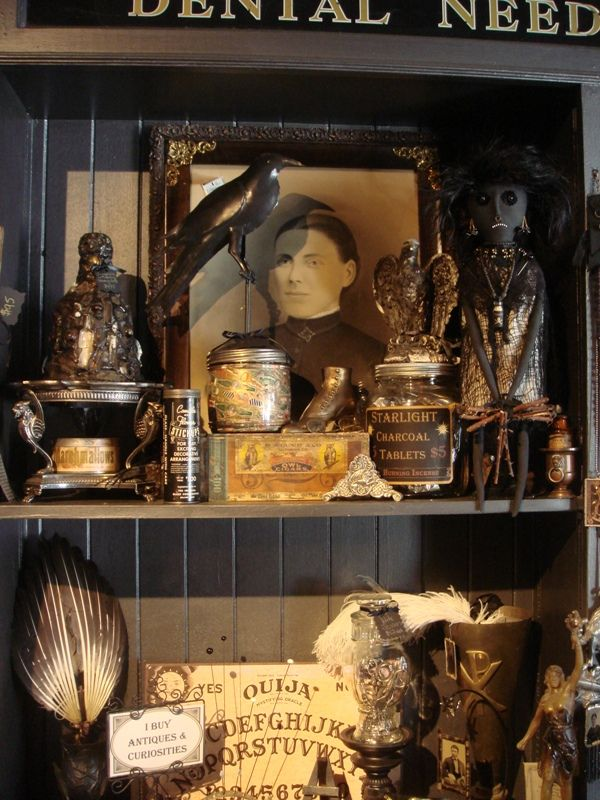 158 best images about little cabinet of oddities on Oddities home decor