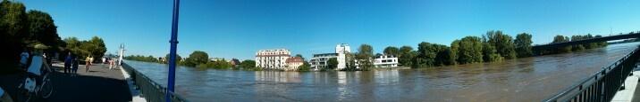 Hochwasser in Magdeburg, Blick zum Werder