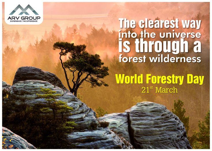 #SaveForest #WorldForestDay