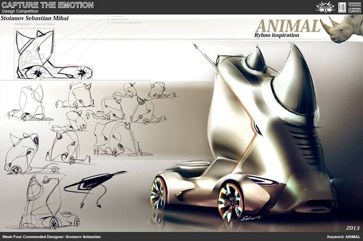 Animal - By: Stoianov Sebastian.