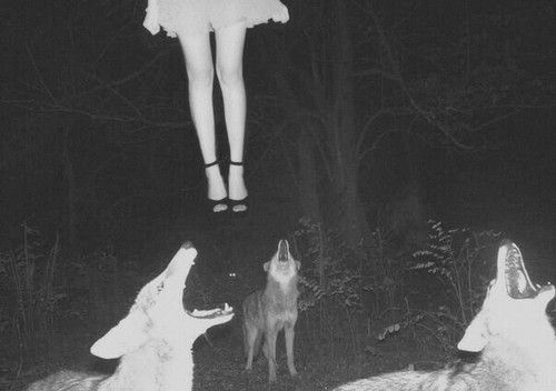 death suicide creepy vintage dark sick fear pale mystic wolfes ...
