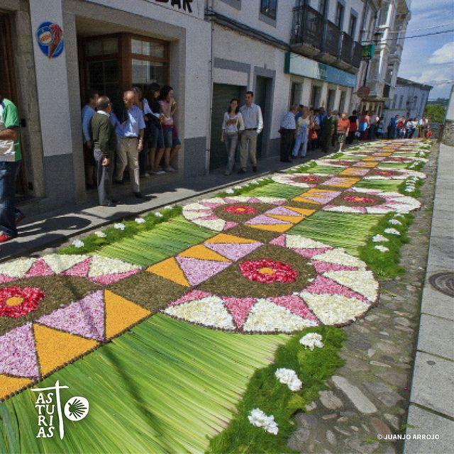 Alfombras florales de Castropol, Asturias, España