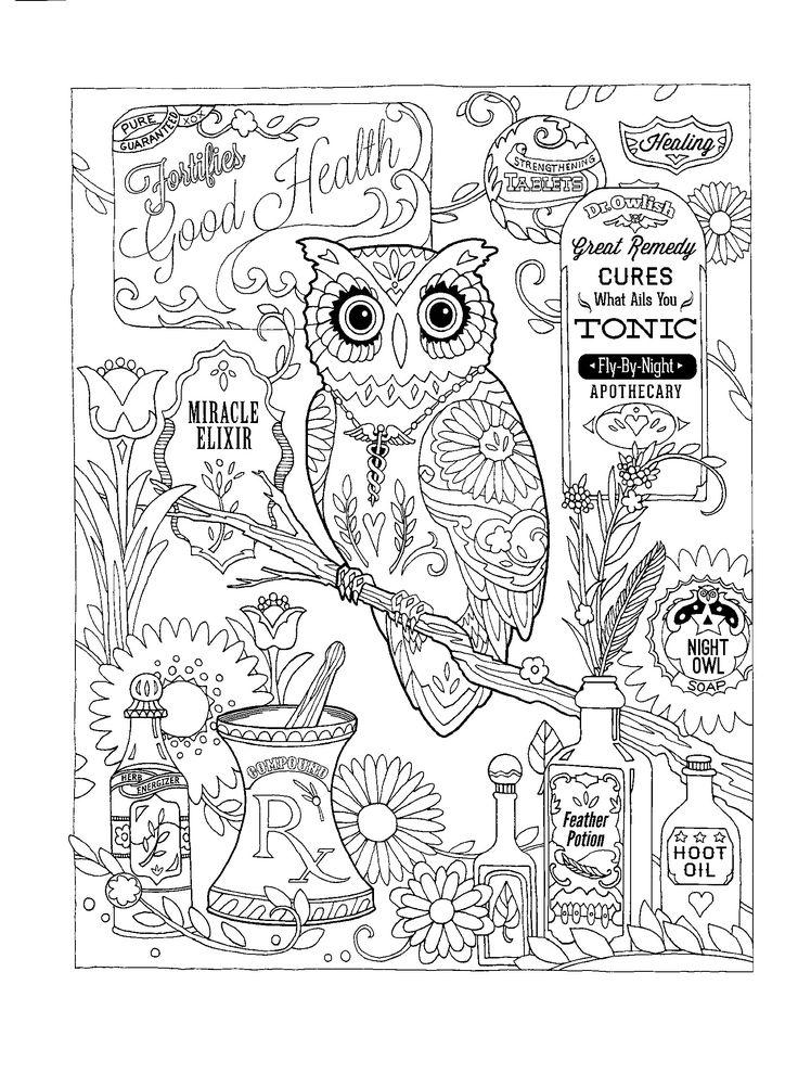 Mejores 31 imágenes de eulen en Pinterest | Búhos, Libros para ...