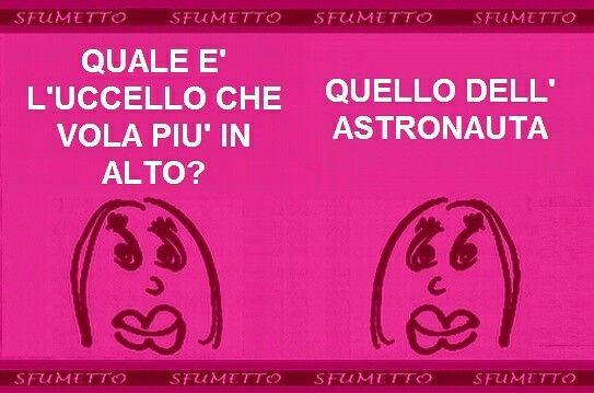 #Indovinello dell'#uccello che vola alto. #barzellette #vignette #battute #cazzate #stupide