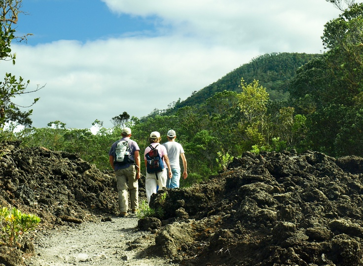 Walking the volcanic path to the summit of Rangitoto Island