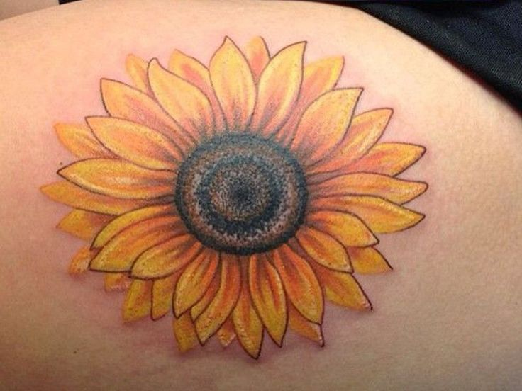 43 Sunflower Tattoos - Meanings, Photos, Designs for men and women