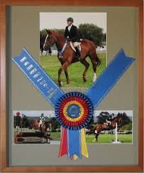 Image result for ribbon horse picture frame