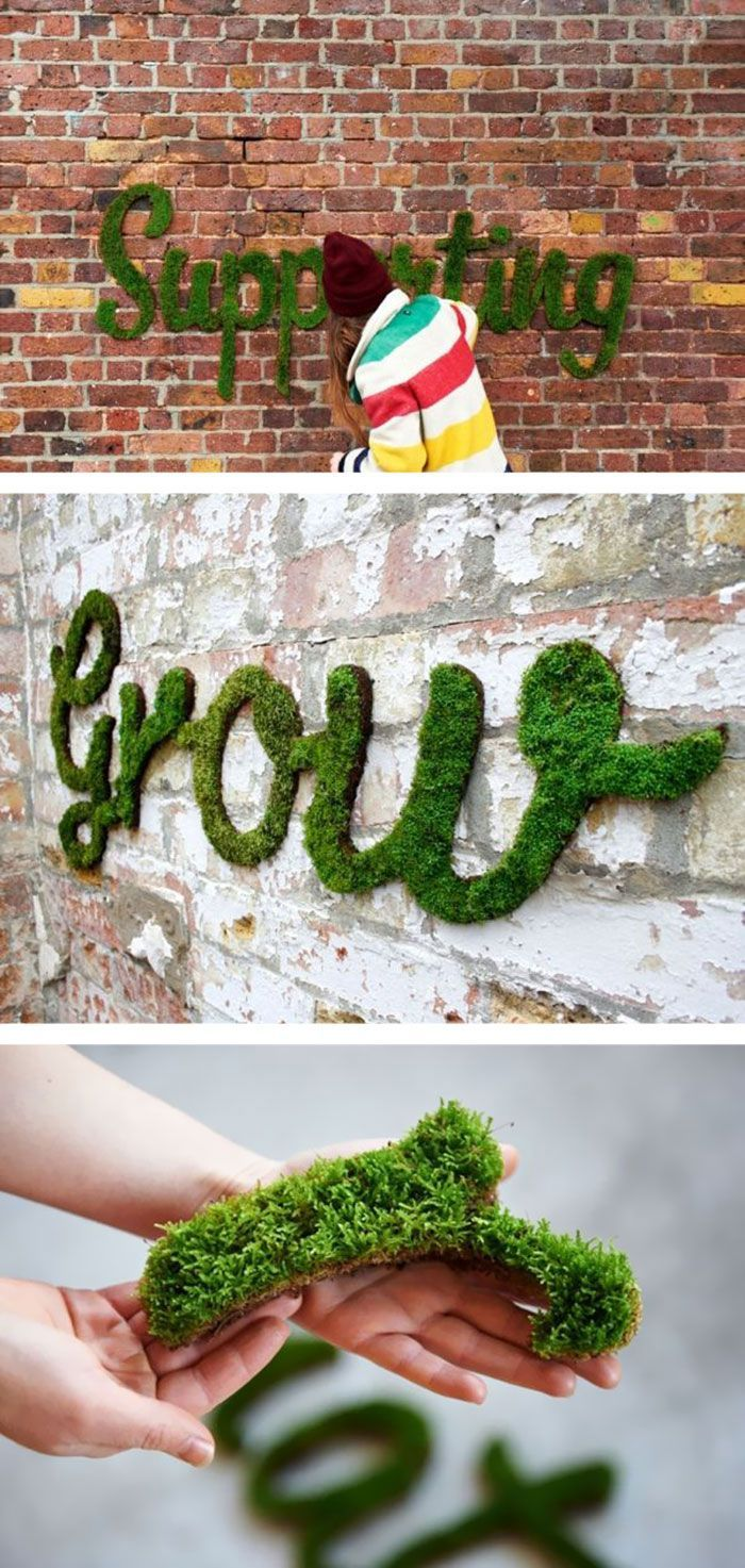 See the gorgeous ways moss is creeping up to be a big interior design trend this season. ––– Prairie Gardens Champaign, Illinois www.prairiegardens.com