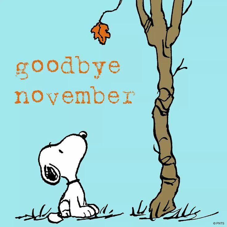 Goodbye, November!