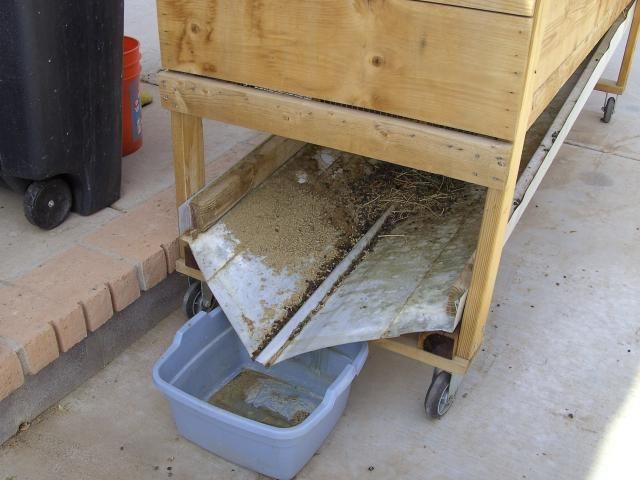 http://www.backyardchickens.com/forum/uploads/27390_diana2009_101.jpg