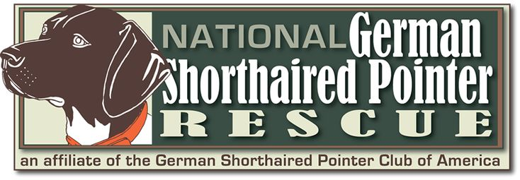 National German Shorthaired Pointer Rescue