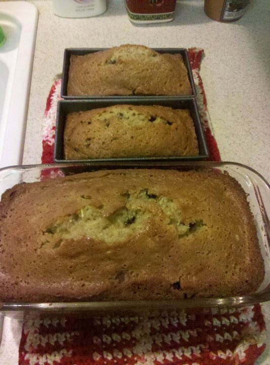 Paula Deen's Chocolate chip zucchini bread...Yum!