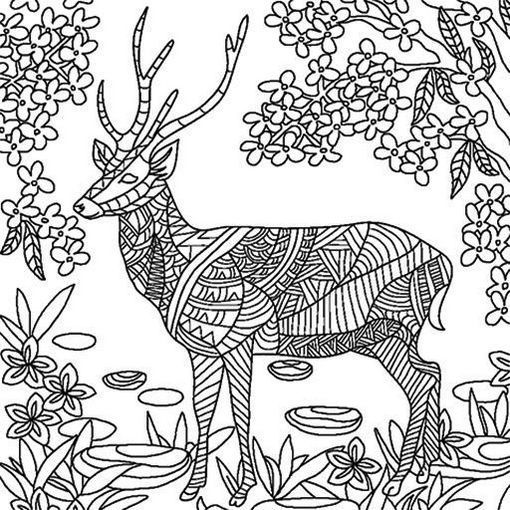 417 Best Images About Art Coloring Pages Amp Designs On