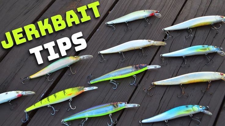 Bass Fishing Tips - Jerkbait (Everything You Need To Know)