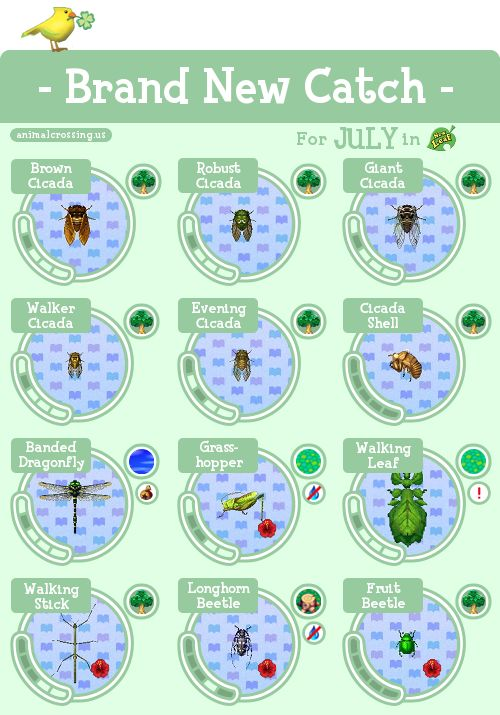 New Insects/Fish for July