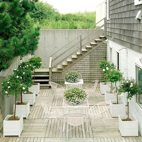 Brighten a space with flowers! - Outdoor Entertaining Tips from Tom Delavan