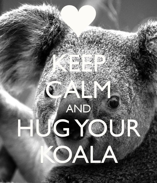 koala baby fourth of july