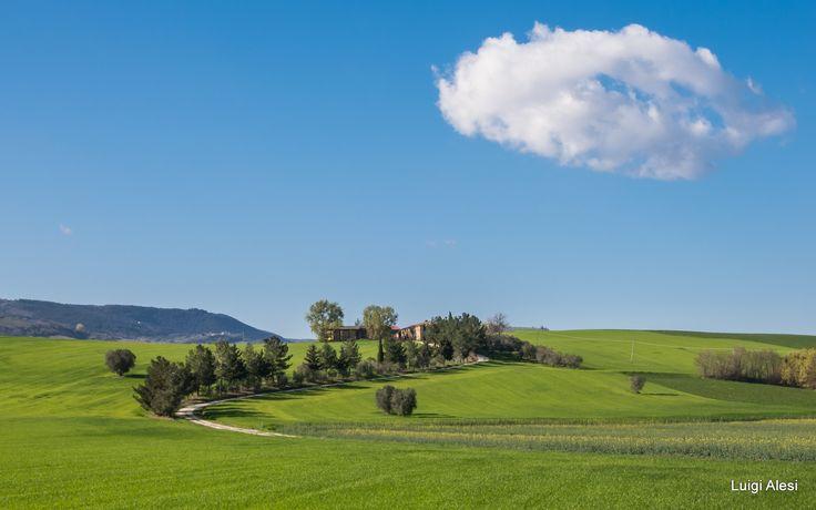 verde primavera - Berta - valle del Potenza (MC)