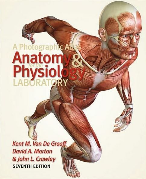 Thisfull-color atlas is designed for all students taking separate or integrated courses in human anatomy and physiology. This atlas can accompany and augment any human anatomy, human physiology or combined human anatomy and physiology textbook. It is designed to be of particular value to ...
