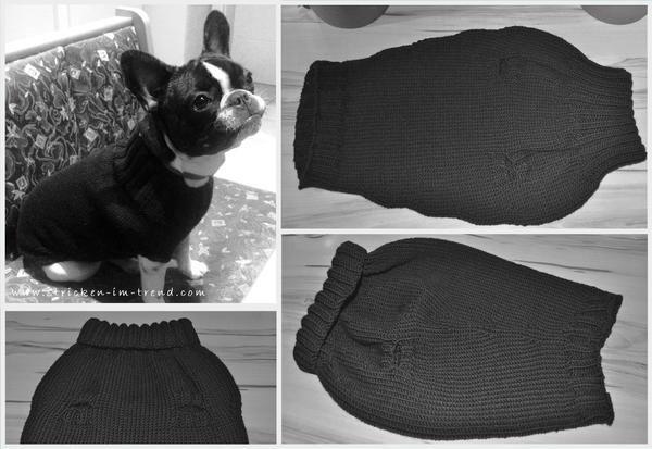 Strickanleitung für Hundepullover - Französische Bulldogge | Dog\'s ...