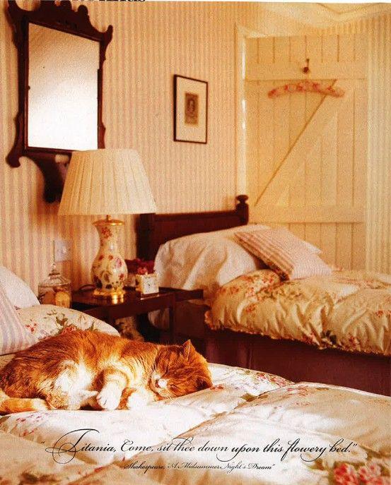 slaapkamer met kat