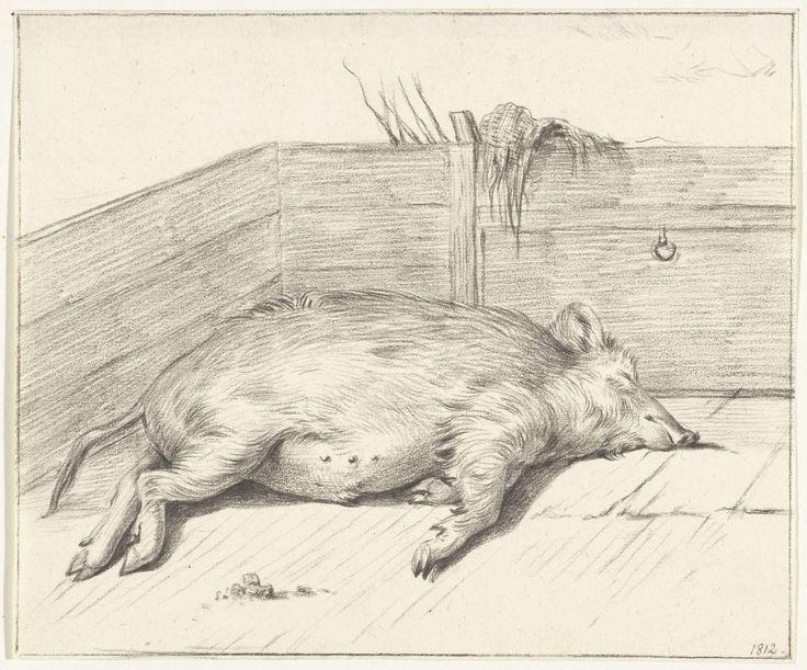 Jean Bernard | Liggend varken, in de hoek van een hok, Jean Bernard, 1812 |