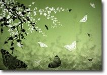 Butterflies and Blossoms Green on canvas.  Price: $25  Ships worldwide from http://www.thecanvasartfactory.com.au  #green #white #children #art #canvas