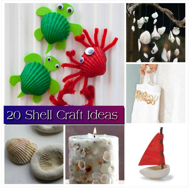 20 Shell Craft Ideas