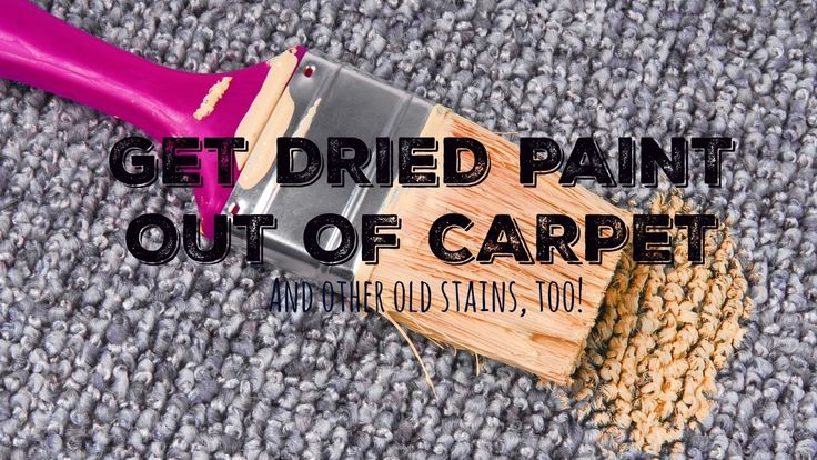 carpets until you read this a photo how to get stains carpets cleanses. Black Bedroom Furniture Sets. Home Design Ideas
