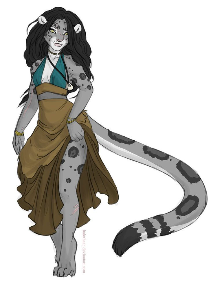 Anthro snow leopard male - photo#43