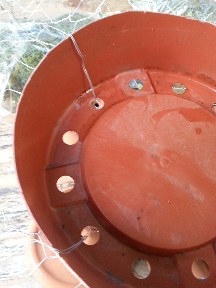 Trimmed Plastic Pot