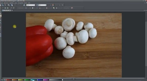 Artikel über die schnelle Fotobearbeitung mit Magix Foto und Grafik Designer... #fotobearbeitung #magix #software