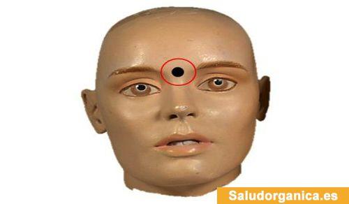 TU SALUD Y BIENESTAR : Punto del tercer ojo: presione 2 minutos este punto y calme estas 9 condiciones