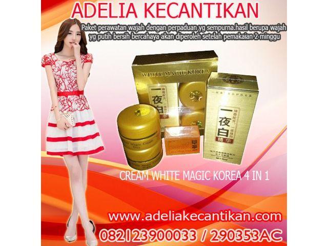 Cream Korea 4 in 1 Menghilangkan Jerawat 082123900033 // 290353AC