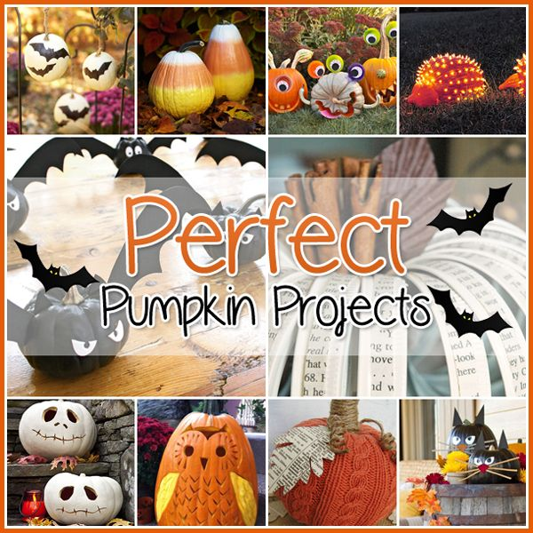 The Cottage Market: 35 Perfect Pumpkin Projects