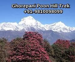 Ghorepani Poonhill trek known also as the little Annapurna Circuit is an extremely popular one in Nepal. The highest point of this trek (3,200m) and for a lot of the highlight is an early morning hike to Poon Hill for a spectacular sunrise over the Himalayas where the mountains stretch as far as the eye can see.