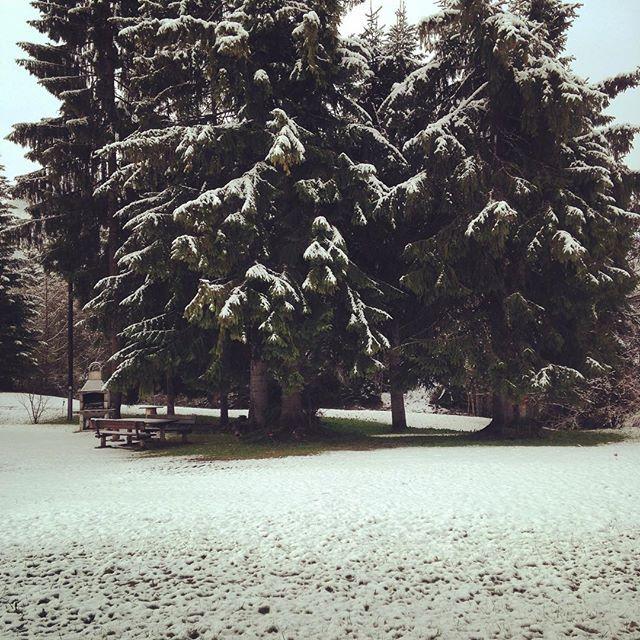 #olympiaregionseefeld #vöstlhof #ferienwohnung #tyrol #tirol #fernweh #familie #urlaub #frühling #winter #grill #holidayhome