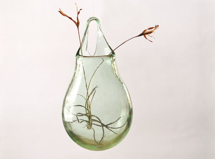 Best 20 vase transparent ideas on pinterest le - Vases decoration interieure ...