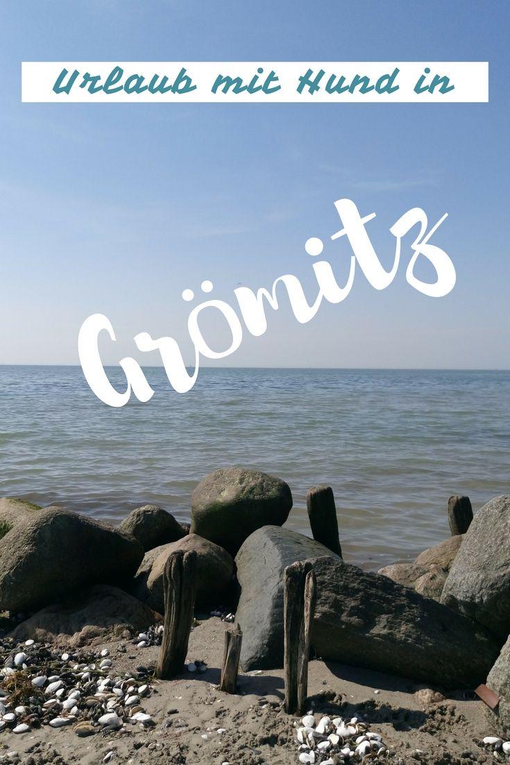 Im Mai haben wir mit unseren Hunden ein paar Tage in Grömitz an der Ostsee Urlaub gemacht. In diesem Artikel erfährst du, wie es uns gefallen hat.